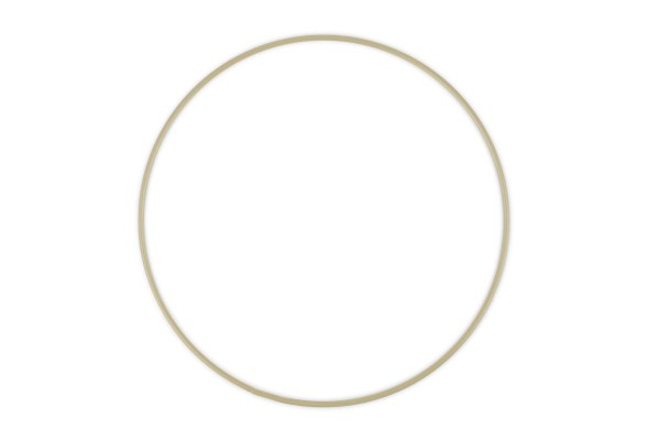Ring rund Metall D20cm